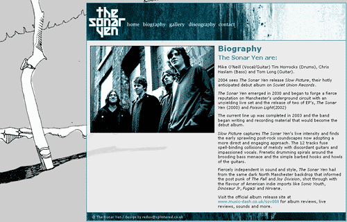 screenshot of thesonaryen.co.uk biography section